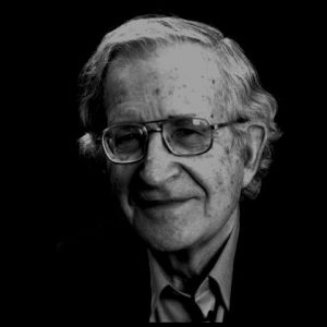 Noam Chomsky quotes in hindi