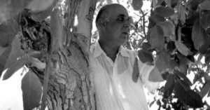 Poems of Giorgos Seferis
