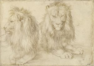 two seated lions